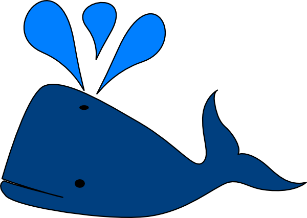 Cartoon Beluga Whale Cliparts Co