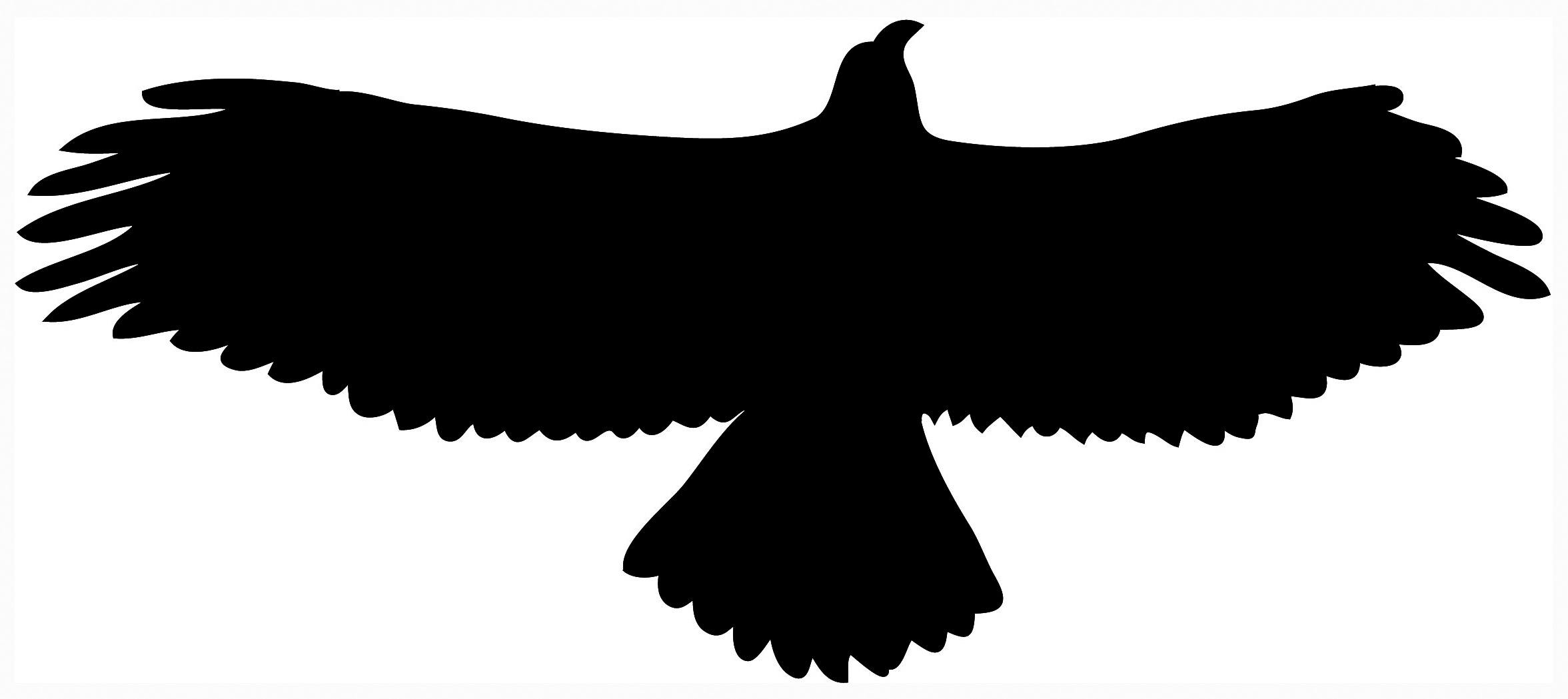 Flying Eagle Clip Art - Cliparts.co