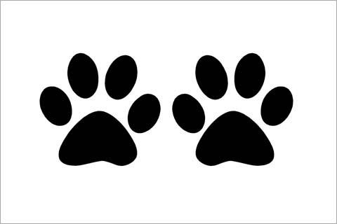 Ver huellas de perritos para colorear - Imagui
