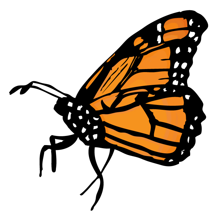 animated butterfly clipart free - photo #27