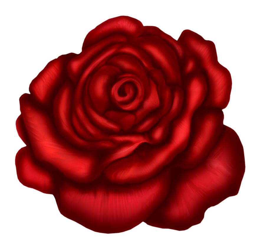 Red Rose Art Picture
