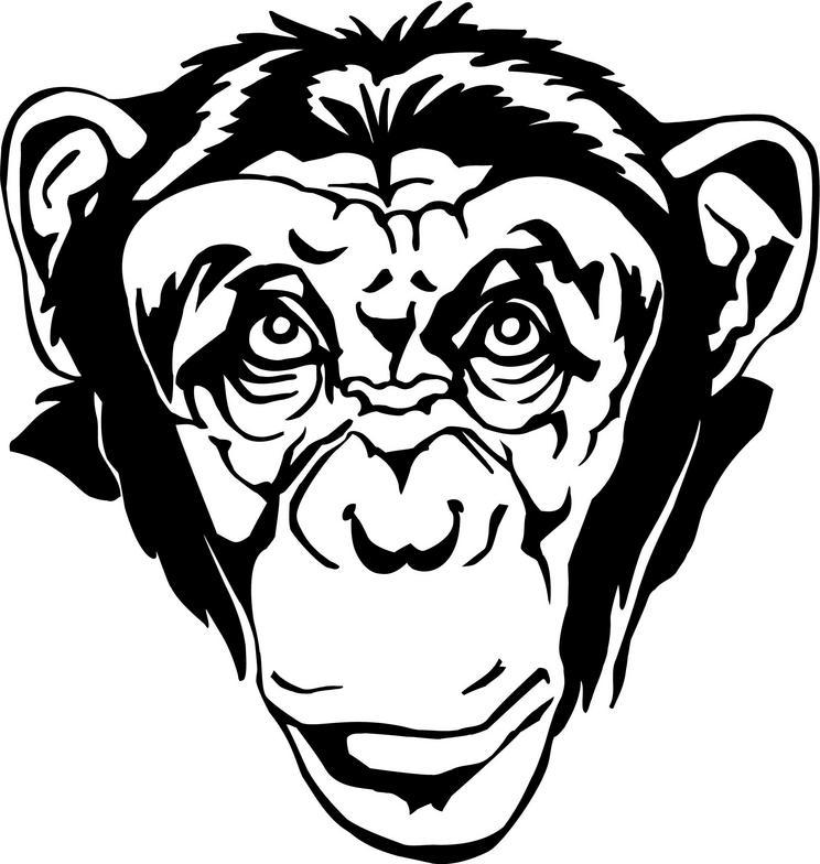 chimpanzee pictures cliparts co