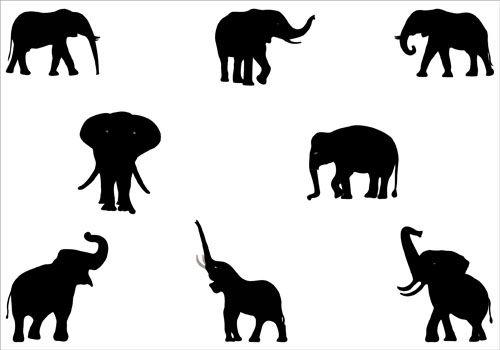 fff65aebdfc9c Elephant Silhouette Vector Graphics | Tattoo's | Pinterest