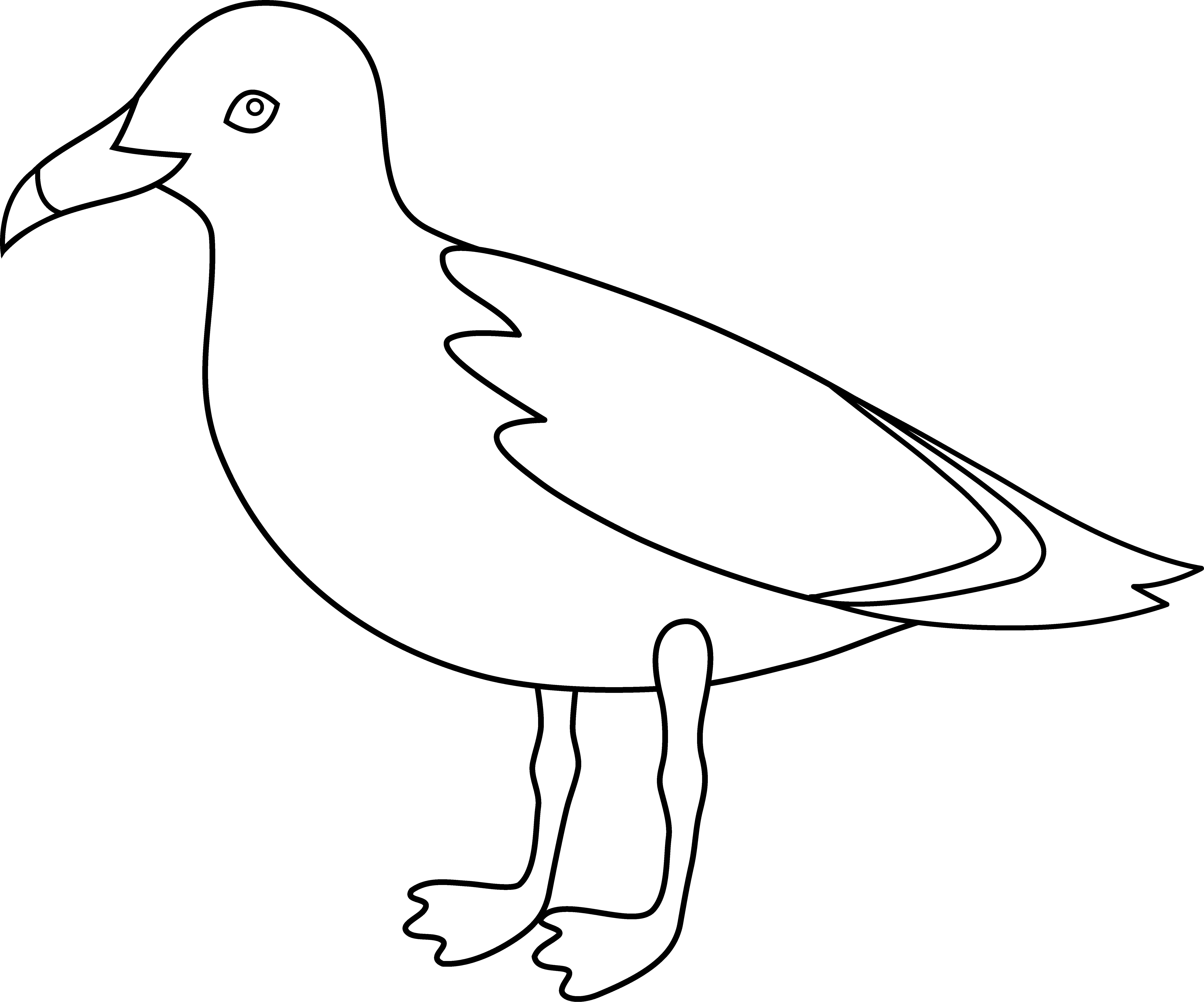 Simple Clip Art Line : Seagull outline cliparts