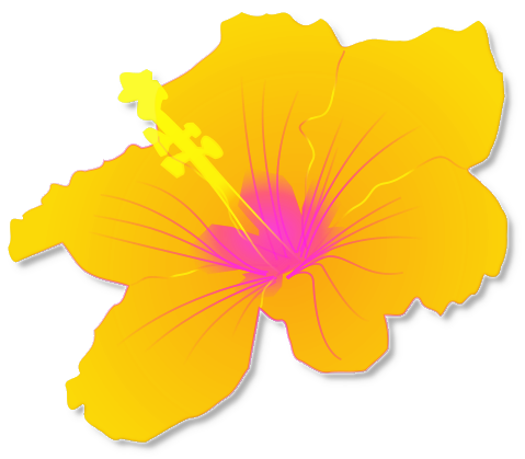 Clipart Tropical Flowers Yellow Hibiscus Clip Art