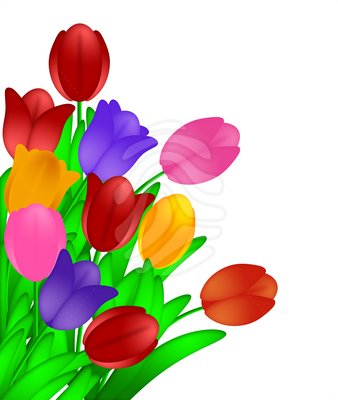 image of tulips clipartsco