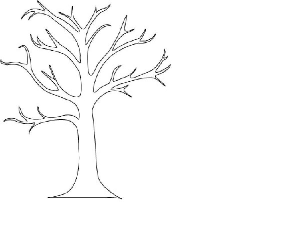 Bare Tree Outline