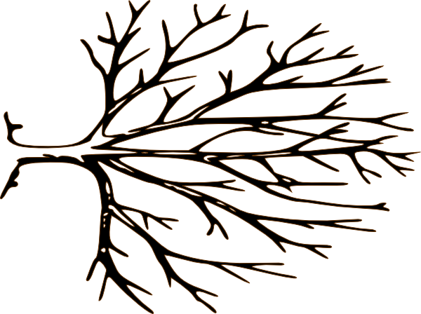 Bare tree template for Friendship tree template