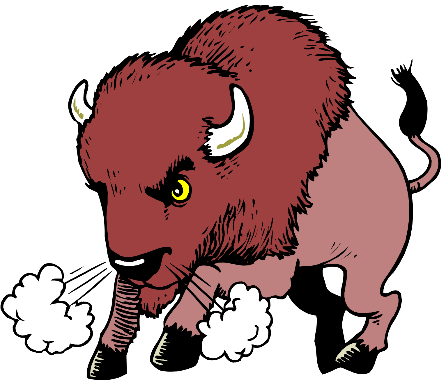 bison clipart cliparts co ndsu bison clipart american bison clipart