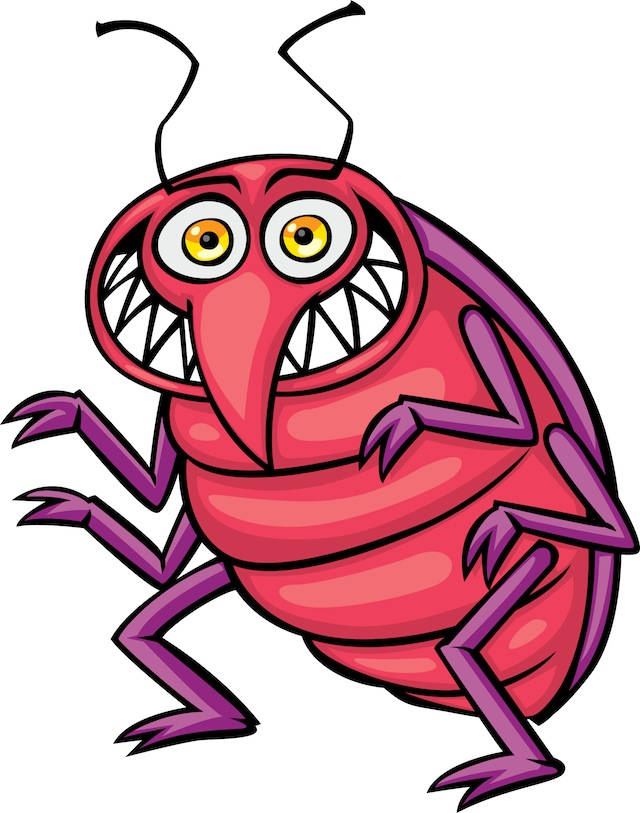 Bed Bug Photos, Clipart Images & Pics: What do Bed Bugs Look Like?