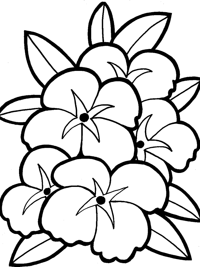 Flowers Coloring - Android Apps on Google Play