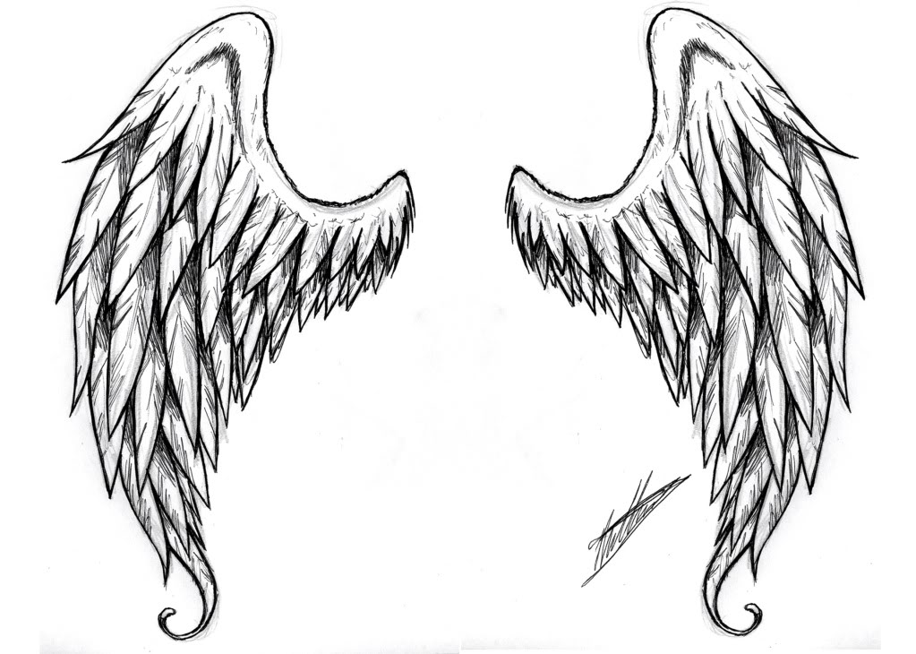 Clipart Angel Wings - Cliparts.co