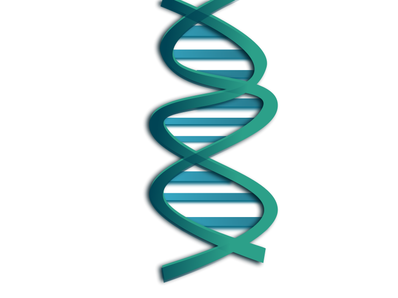 Nucleic Clip Art Download
