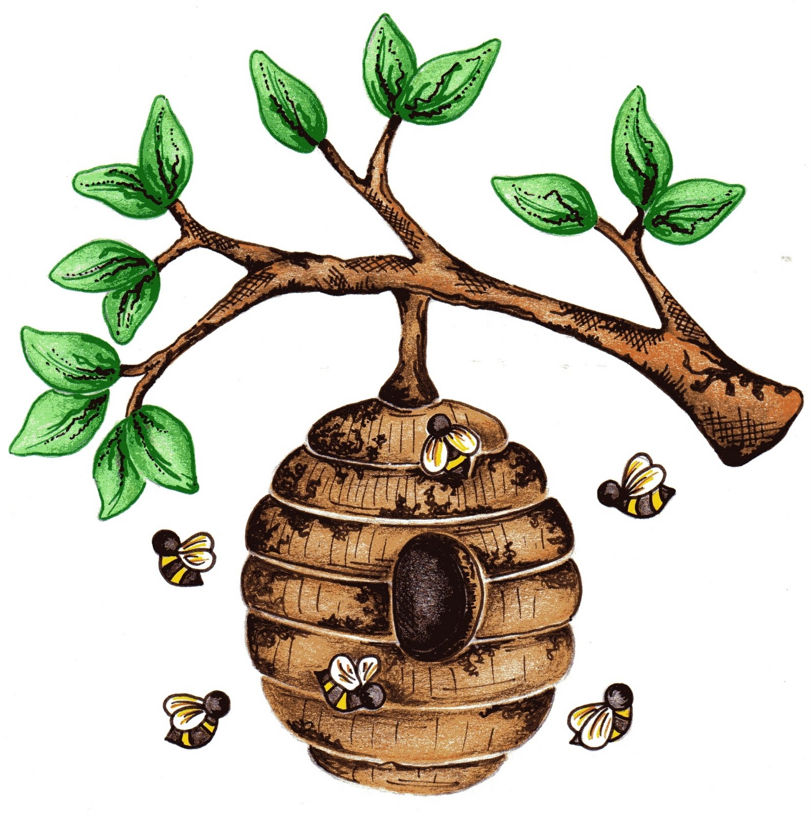 Images For > Bee Hive In Tree Clip Art