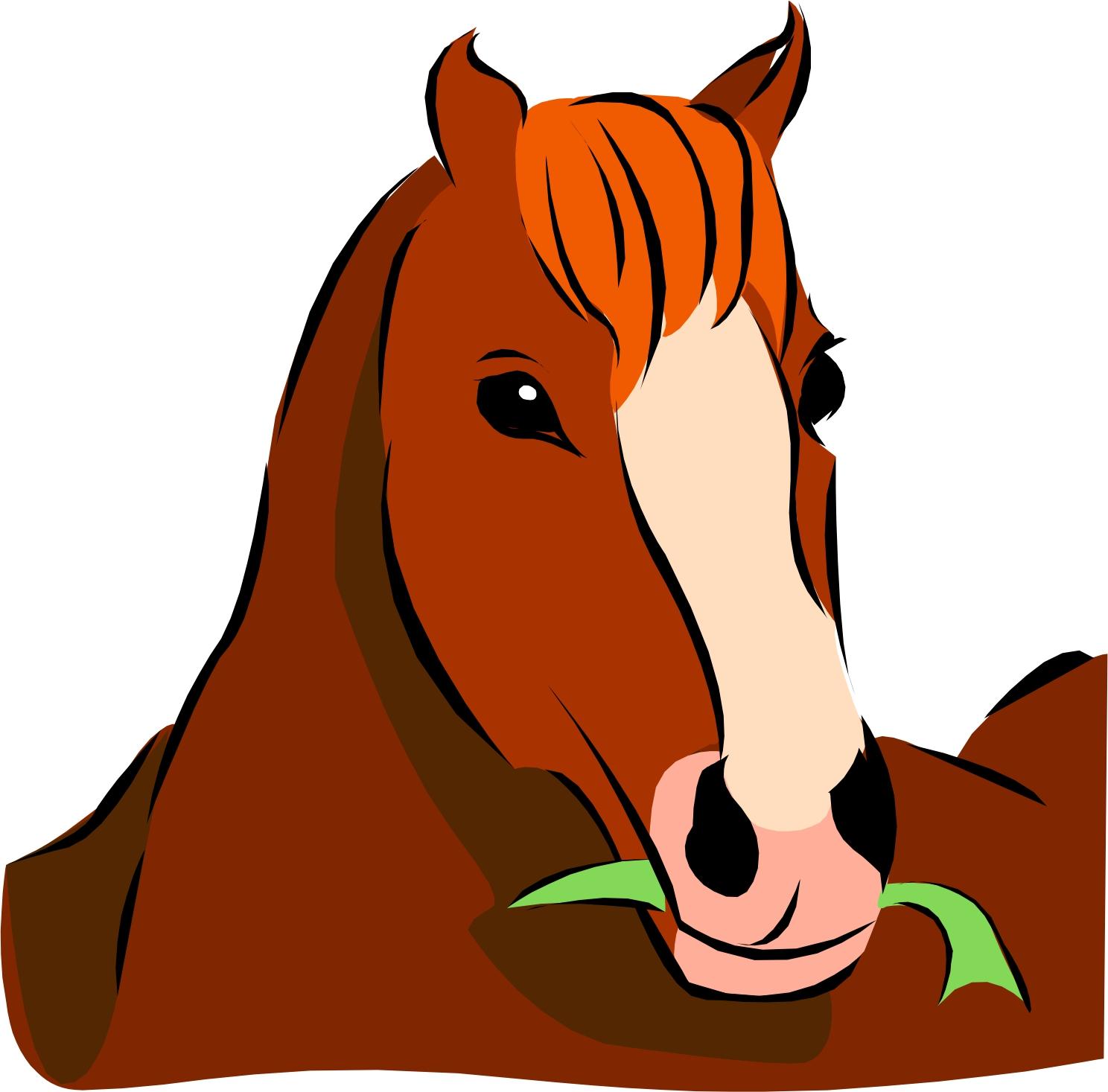 Horse Cartoon Cartoon Horse  Page 3
