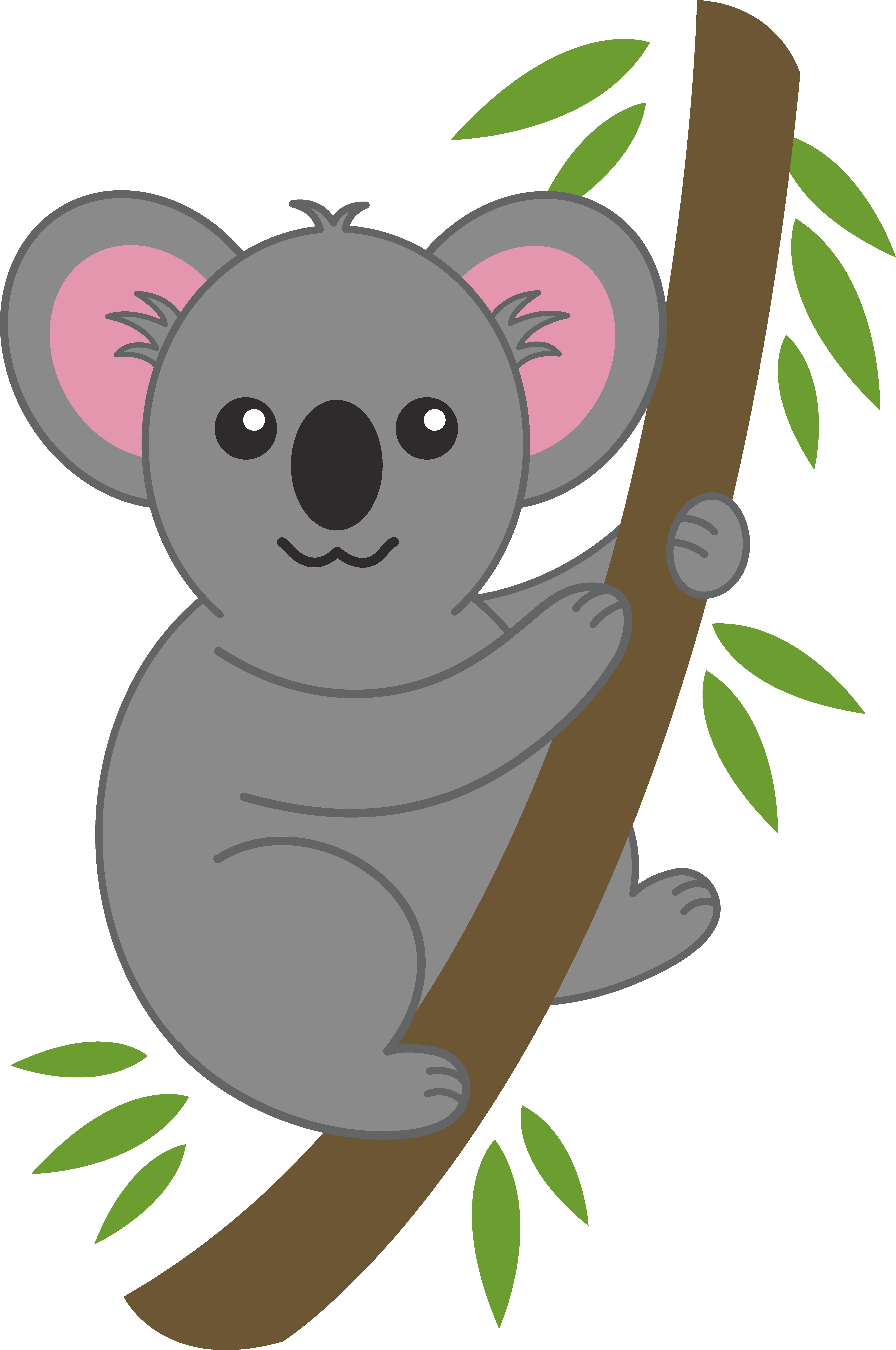Koala Illustration - Cliparts.co