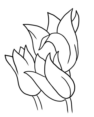 Flower Outline Clipart | Clipart Panda - Free Clipart Images
