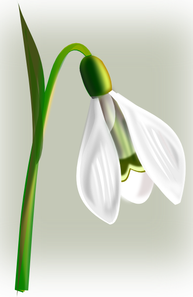 clipart dead flowers - photo #27