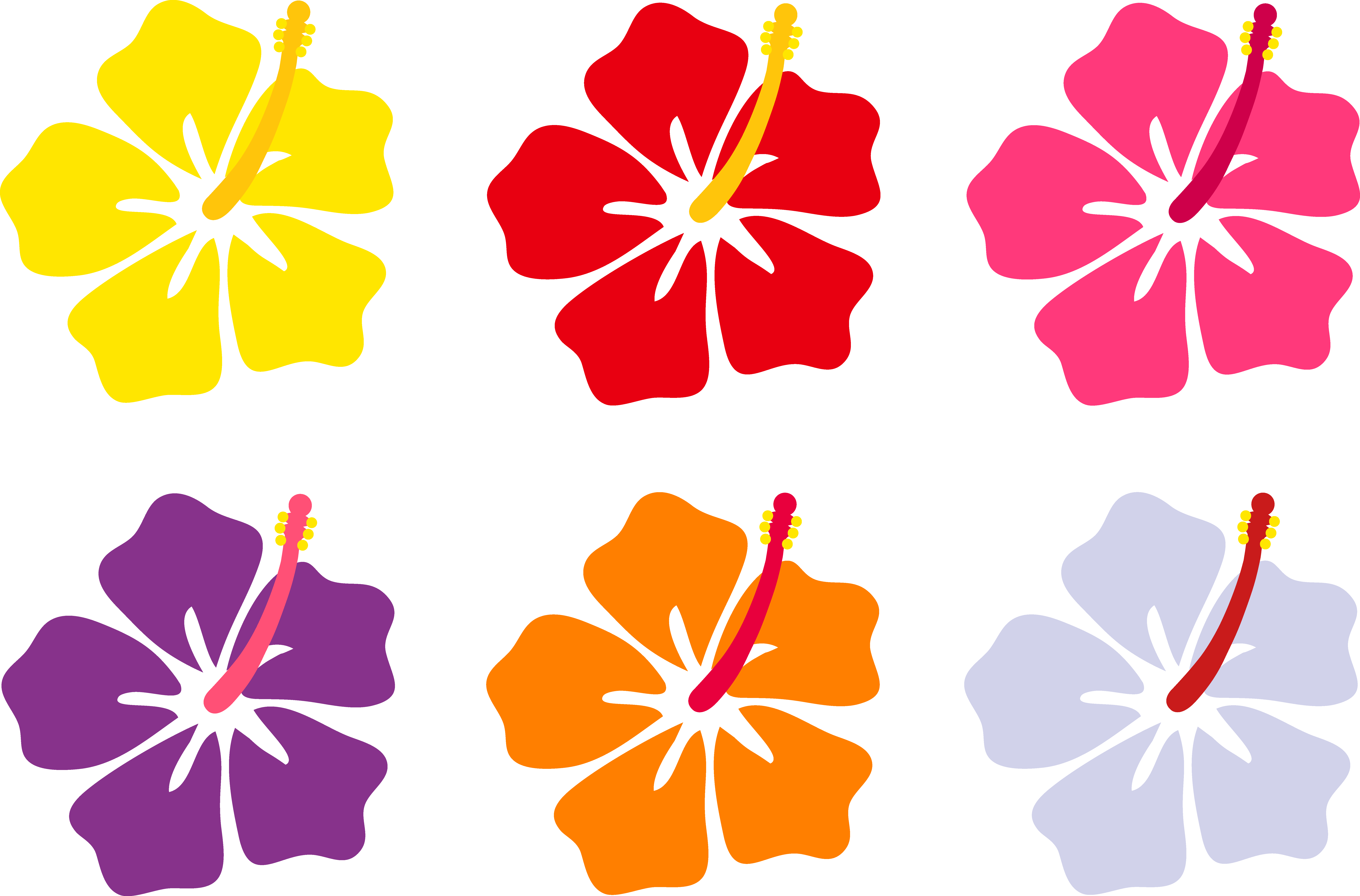 Hawaiian Flowers Clip Art Cliparts