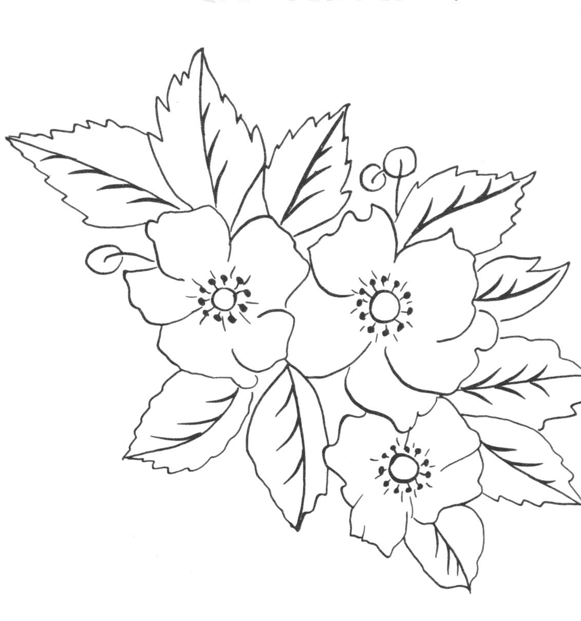 Lotus Blossom Coloring Page