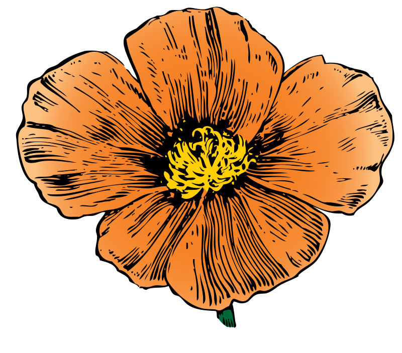 Free to Use & Public Domain Flowers Clip Art - Page 4