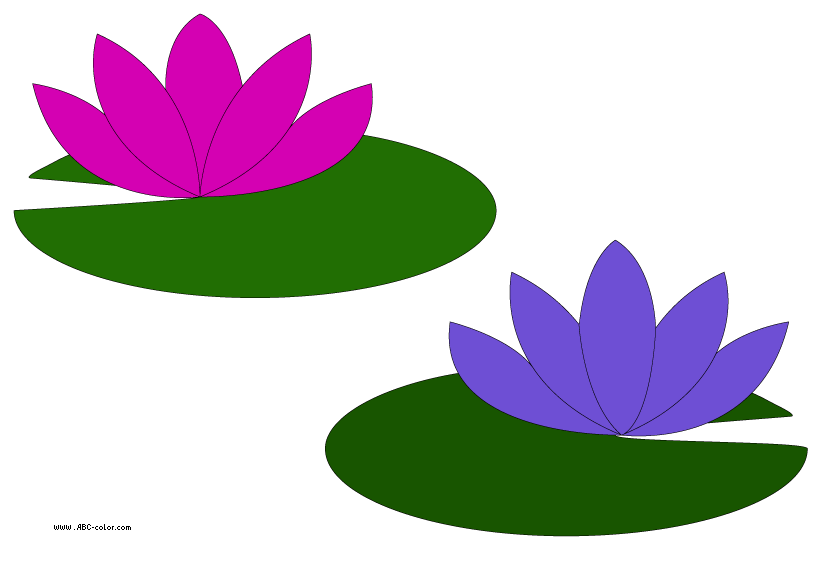 water lily transparent clipart rh worldartsme com water lily clip art free water lily clip art free