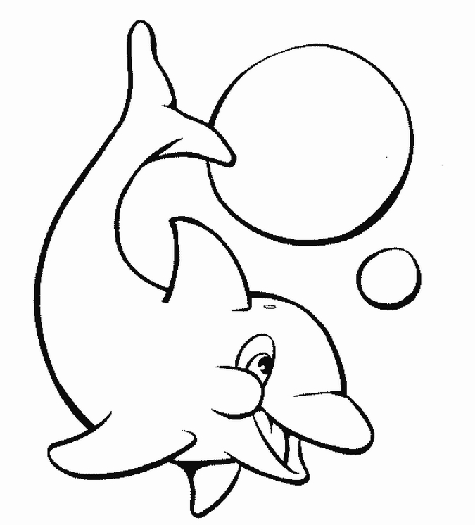 Free dolphin pictures cliparts co
