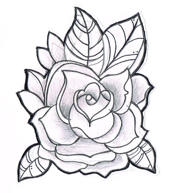 Line Drawing Of A Rose : Line drawing of a rose cliparts
