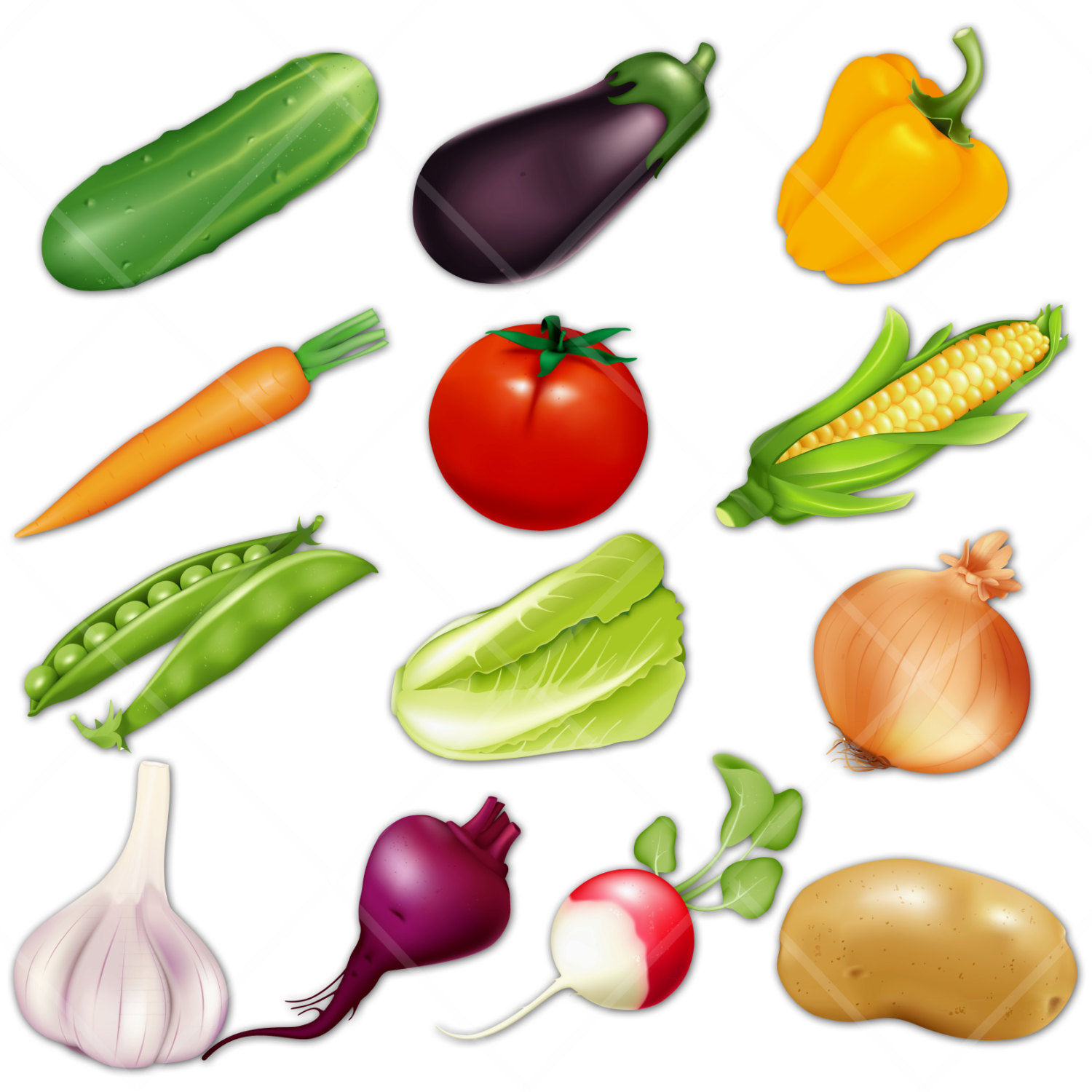 Free Vegetables Clipart - Clip Art Pictures - Graphics ...