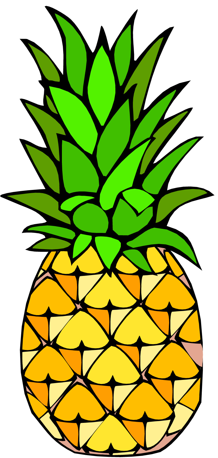 Pineapple Stock Illustrations  Dreamstime
