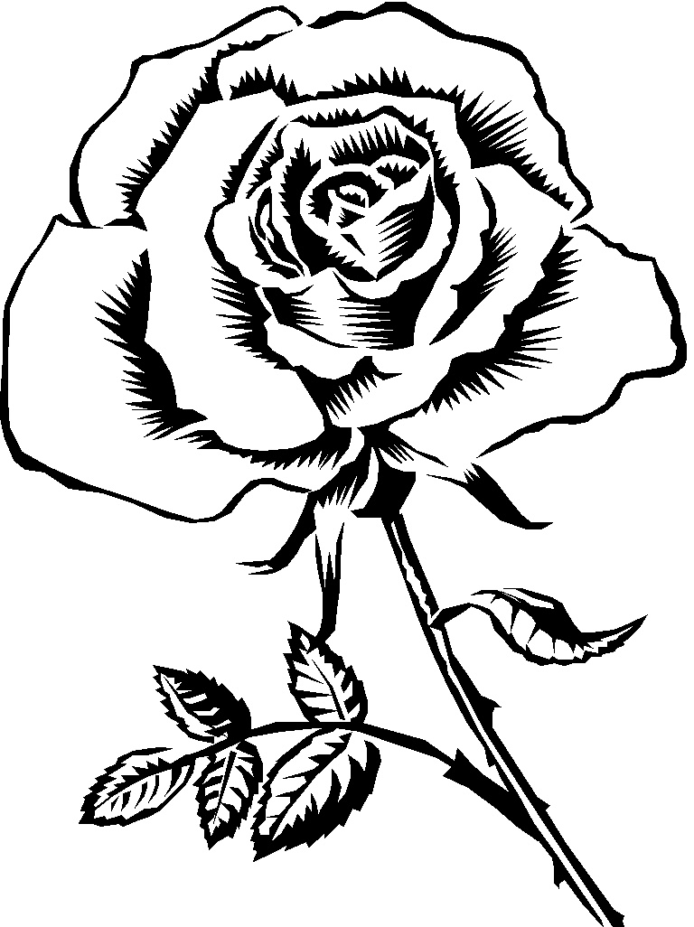 clipart roses black and white - photo #23