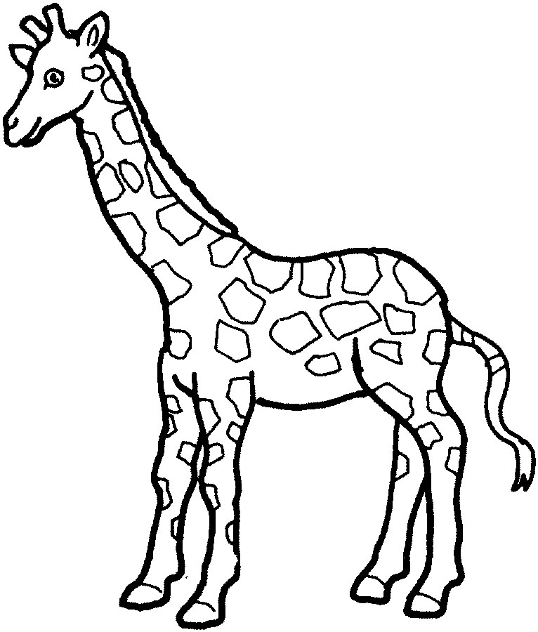 Giraffe Line Drawing - ClipArt Best