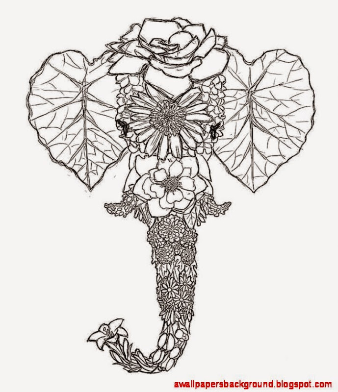 Images of flower drawings for Amazing drawings of roses