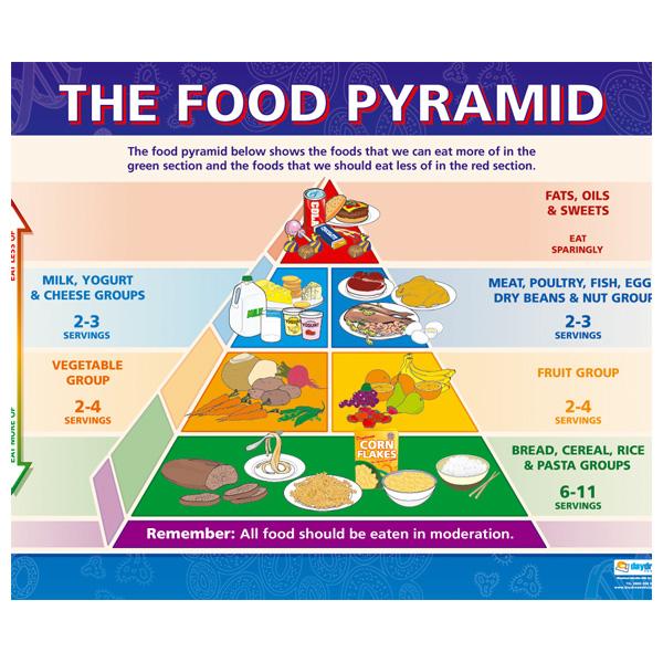 Healthy Eating Food Diagram