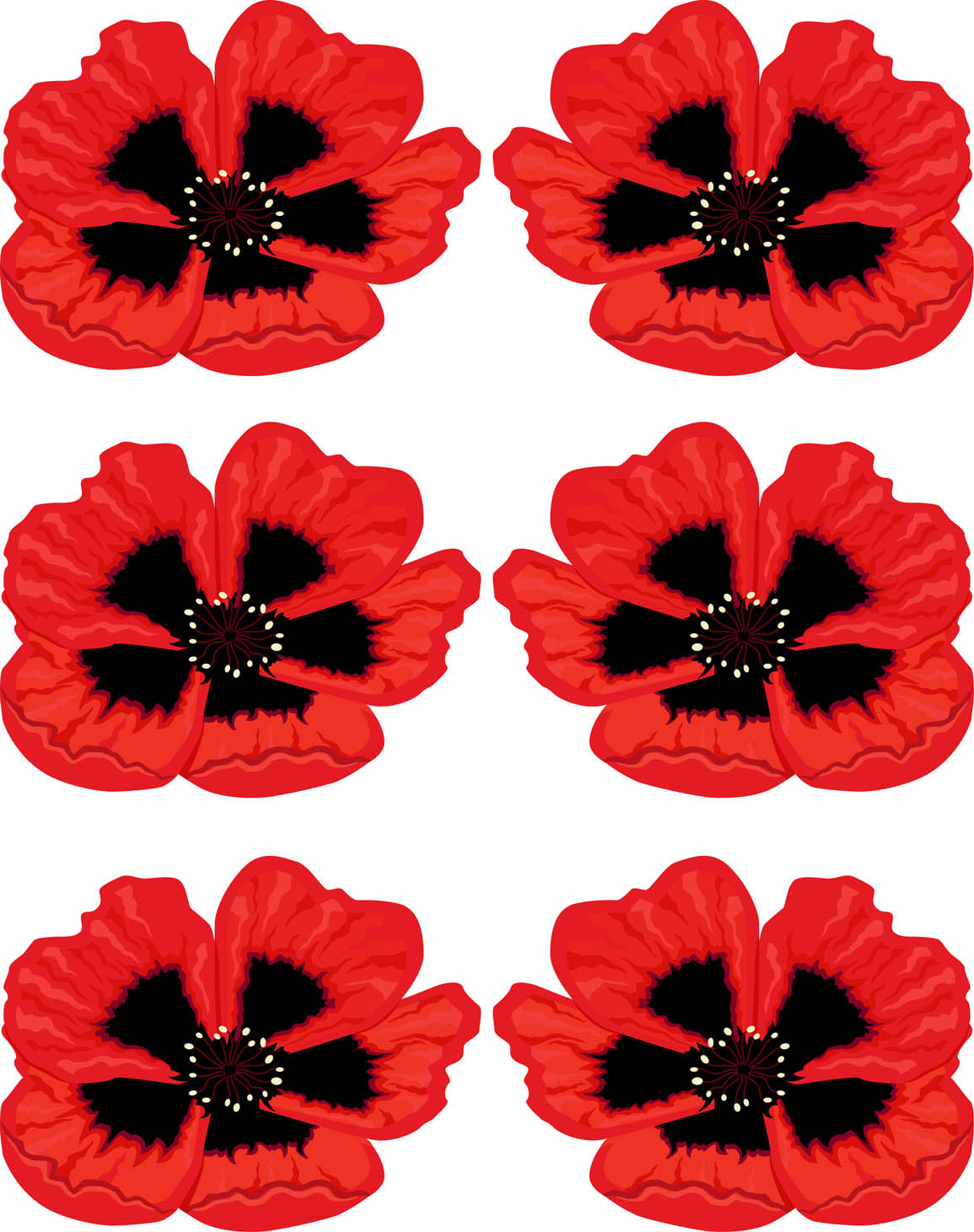 Candid image intended for poppies printable