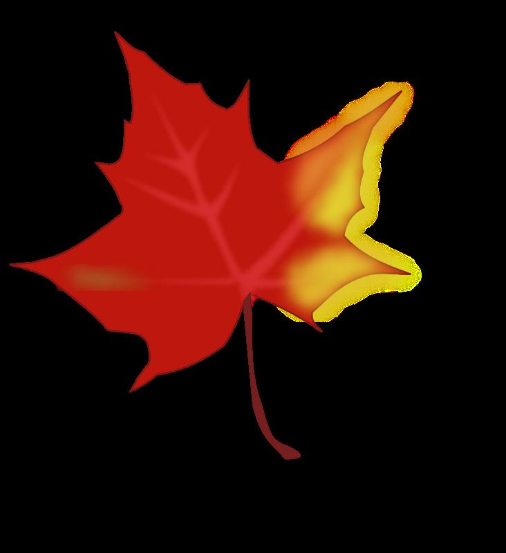 Maple Leaves Clip Art - Cliparts.co