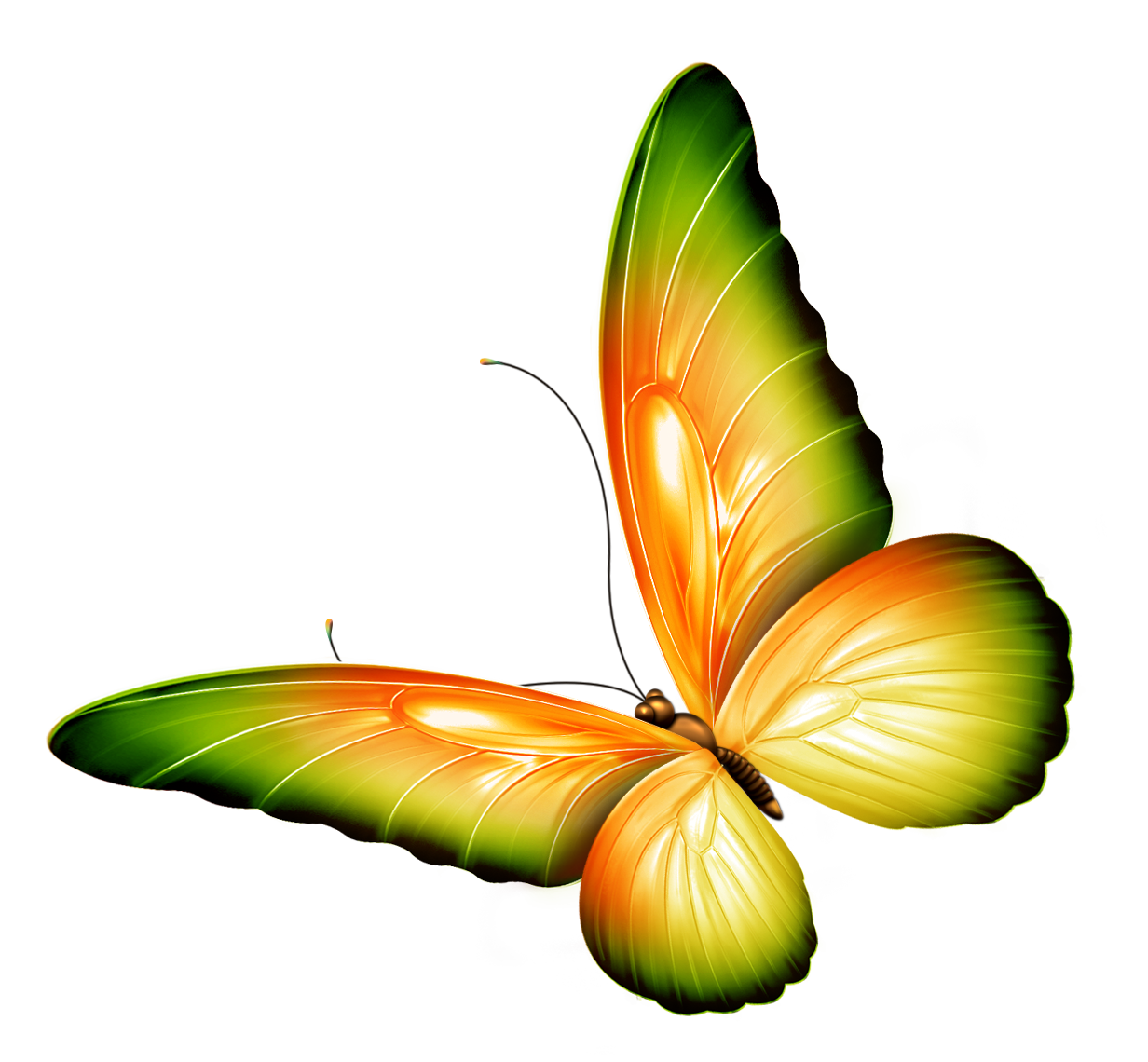 Yellow and Green Transparent Butterfly Clipart