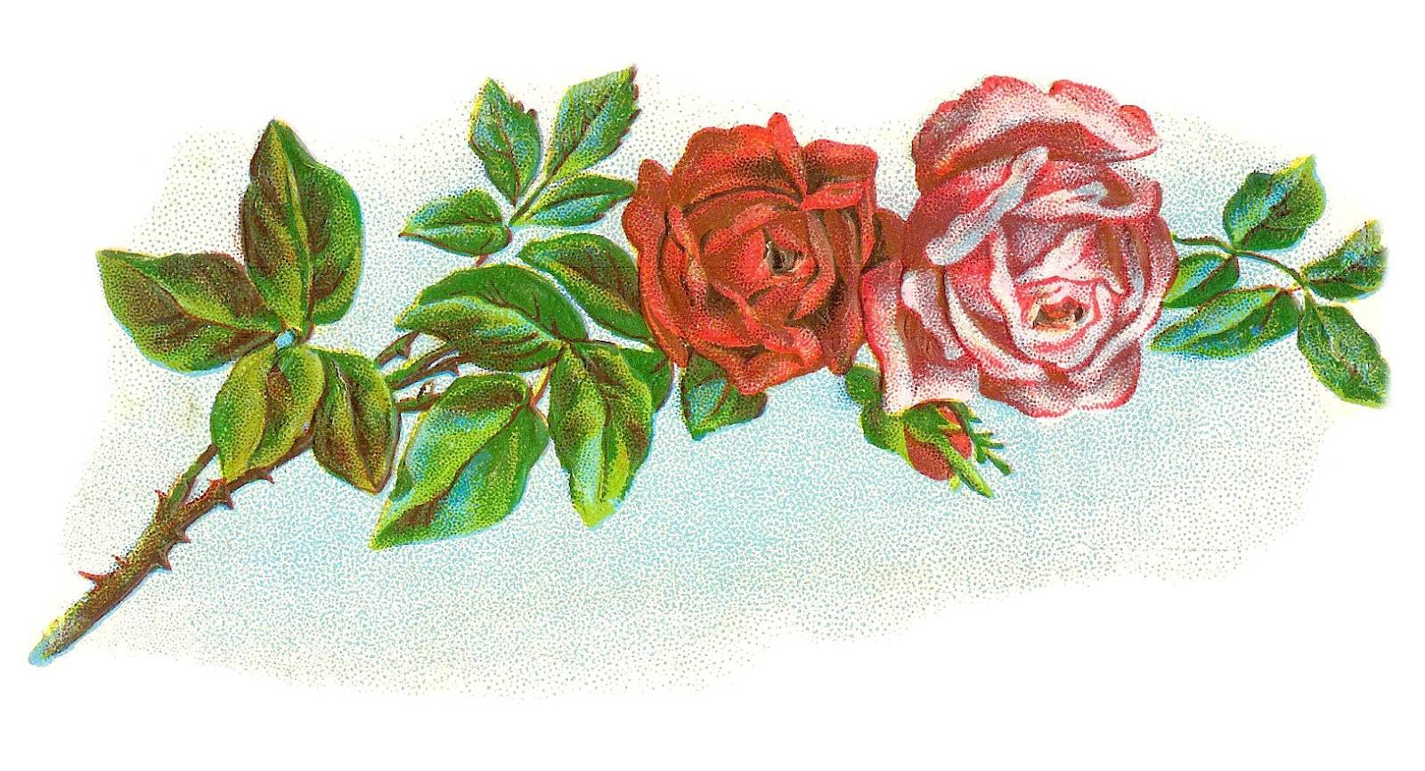 Rose Graphic - ClipArt Best