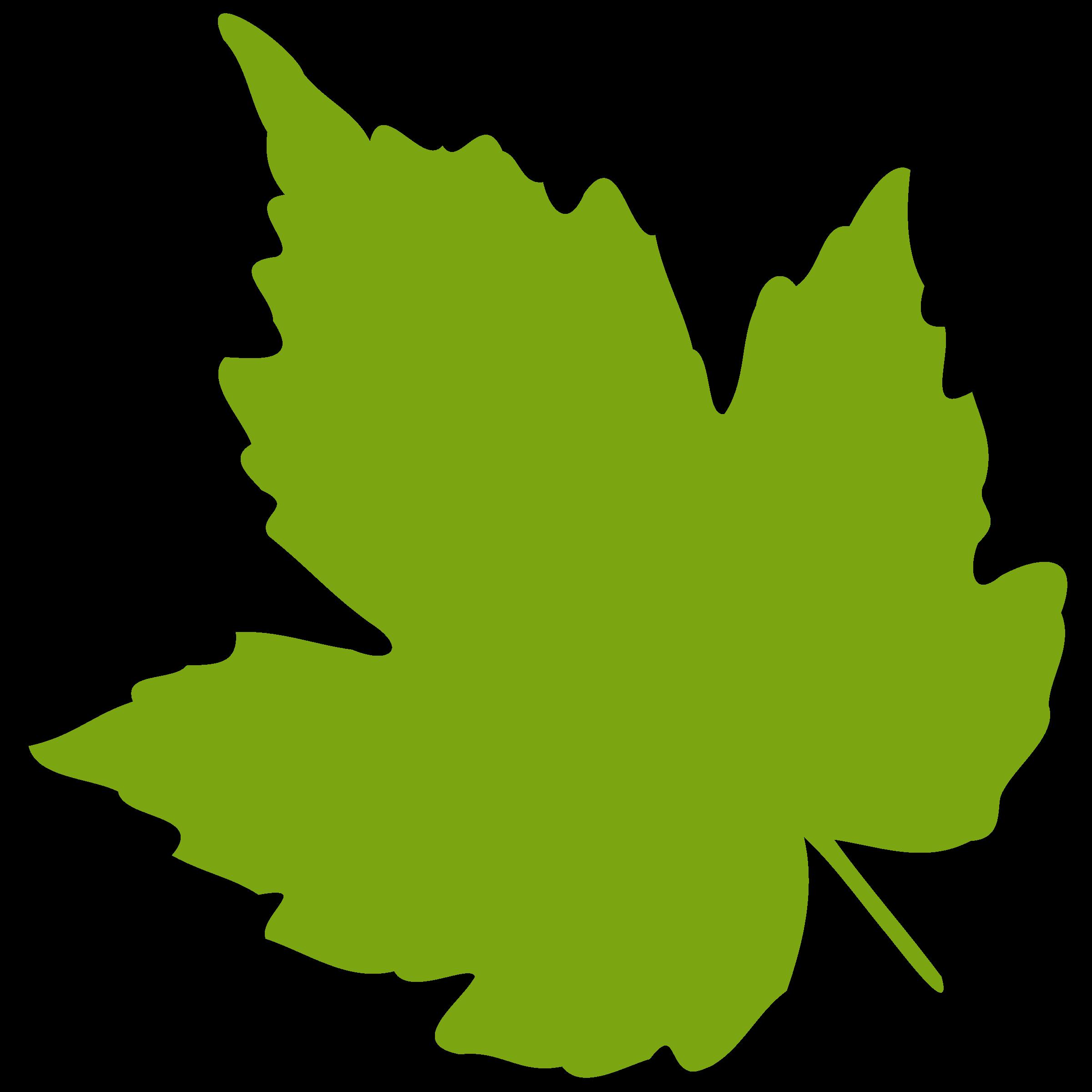 grape leaf clipart rh worldartsme com clip art leaves red clip art leaves border