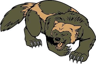 Wolverine animal wolverine is my favorite animal wolverines - Mascots Wolverines Clip Art Cliparts Co