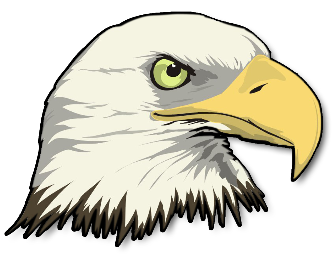 Bald Eagle Head Sticker   Eagle Head Png