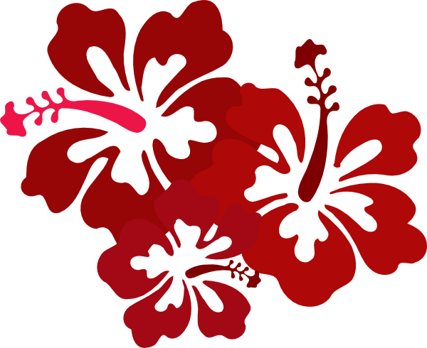 Hibiscus Vector - Cliparts.co
