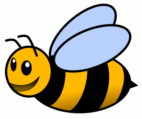 Farmingdale NY Childcare | The Bumble Bee Room at Munchkinland ...