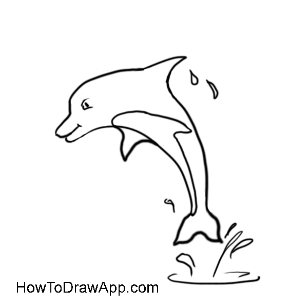 Line Art Dolphin : Line drawing of dolphin cliparts