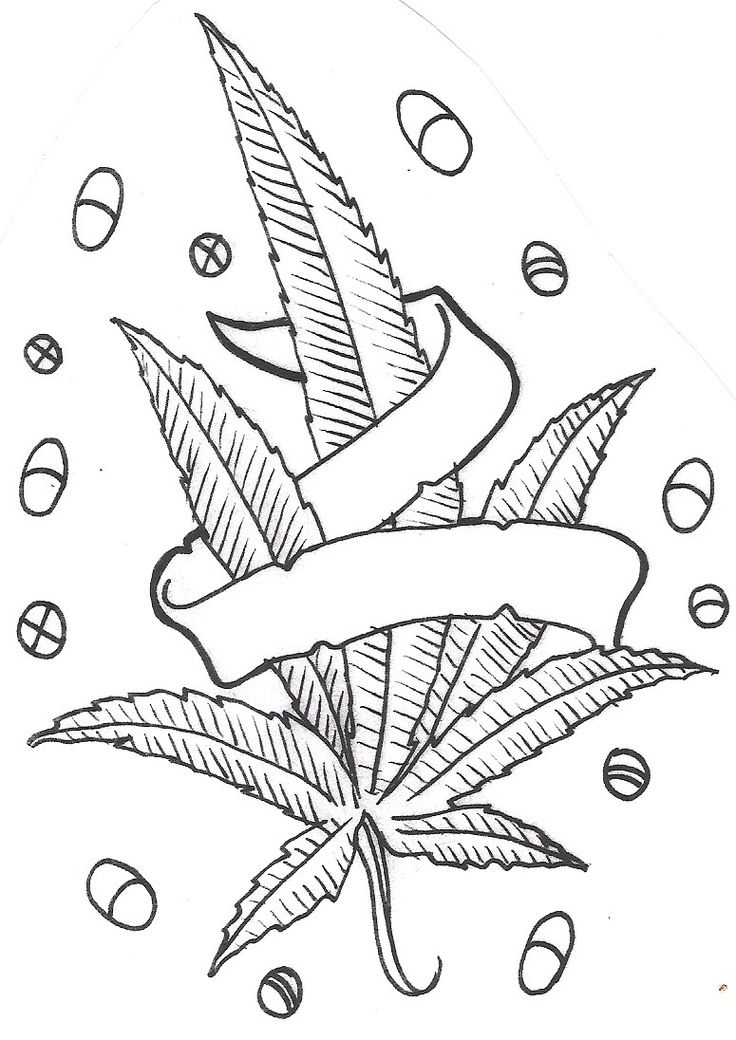 outline of marijuanna Marijuana outline term paper while the free essays can give you inspiration for writing, they cannot be used 'as is' because they will not meet your assignment's requirements.