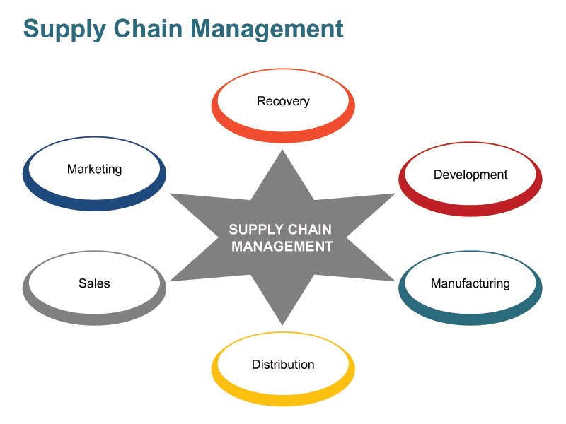 supply chain management supermarket performance In commerce, supply chain management (scm)  it is not clear what kind of performance impacts different supply network structures could have on firms.
