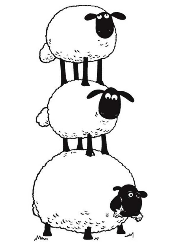 sheep pictures free clipartsco