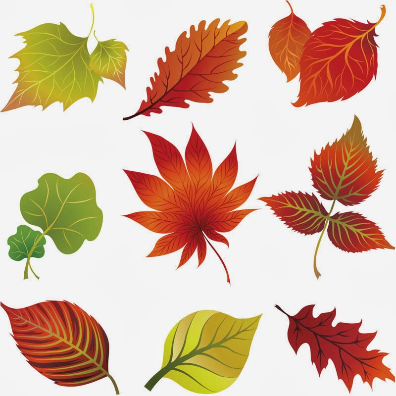 Pictures Of Falling Leaves - Cliparts.co