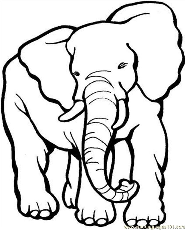 Elephant Face Coloring Page - 2018 images & pictures - Easy Elephant ...