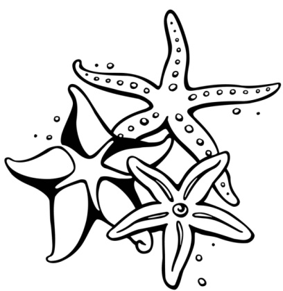 68 images of Starfish Outline . You can use these free cliparts for ...